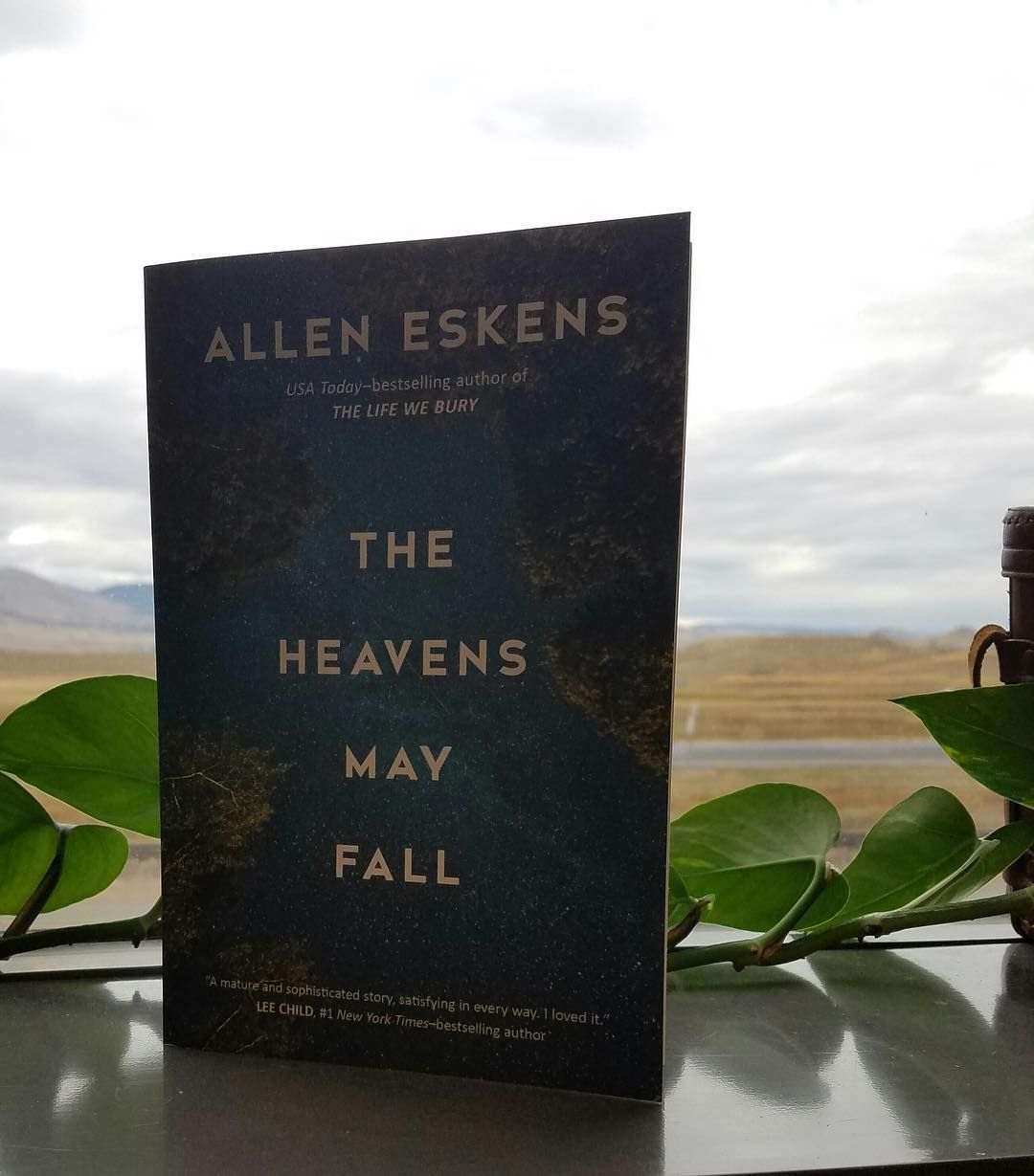 Allen eskens the heavens may fall comes out today find