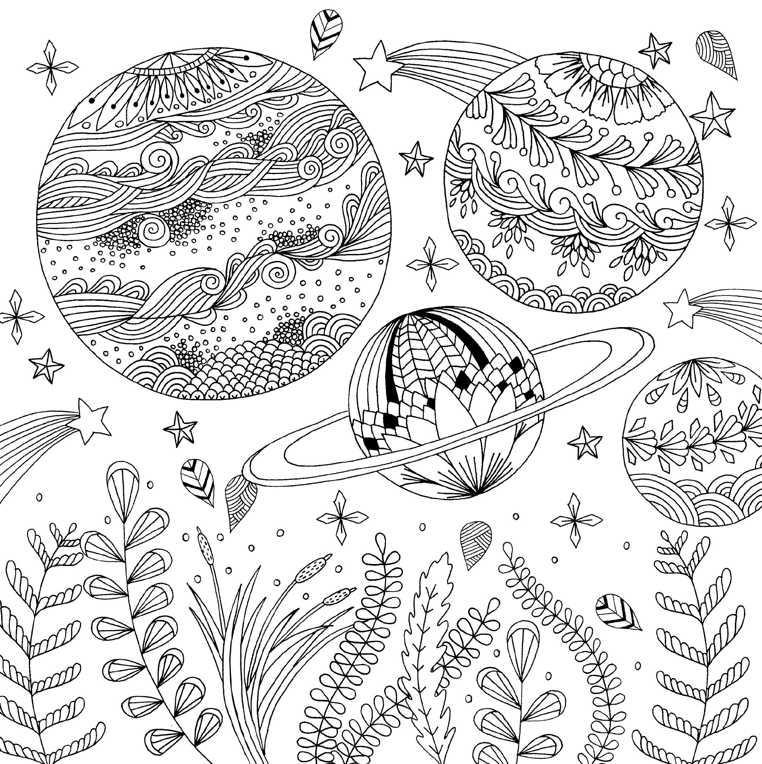 AmazonSmile: Follow Your Dreams Adult Coloring Book (31 ...