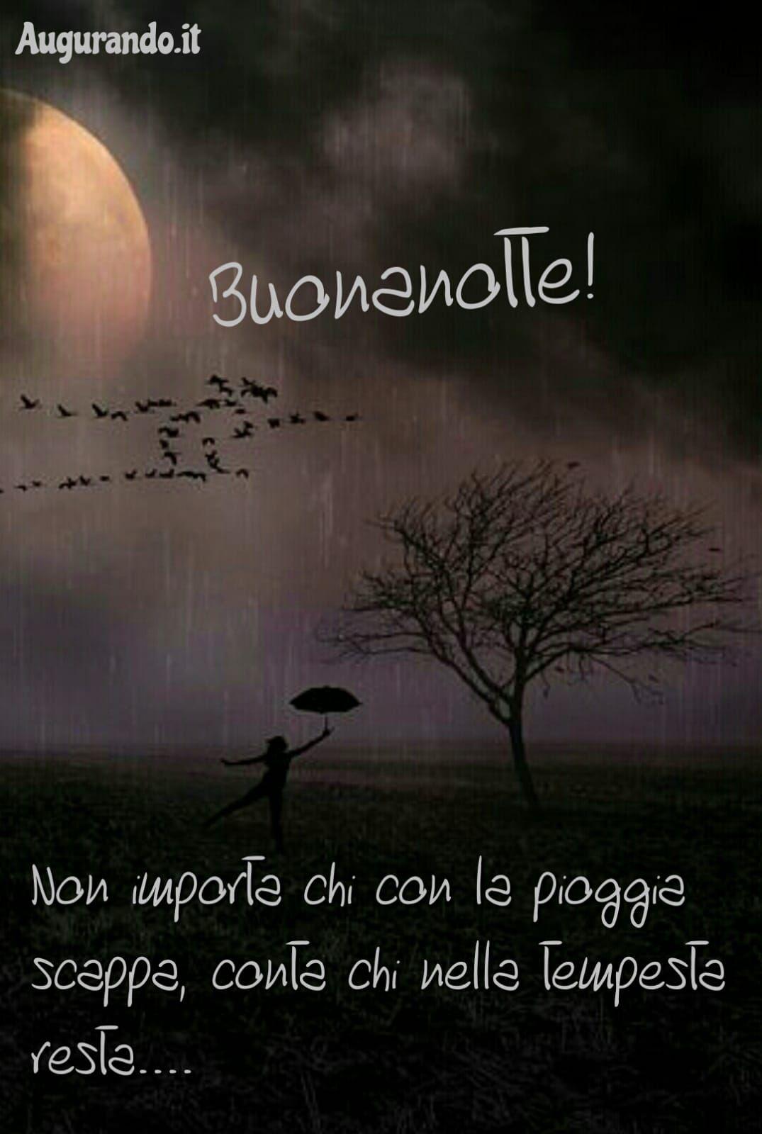 Pin Di Paola T16 Su Buonanotte Buonanotte