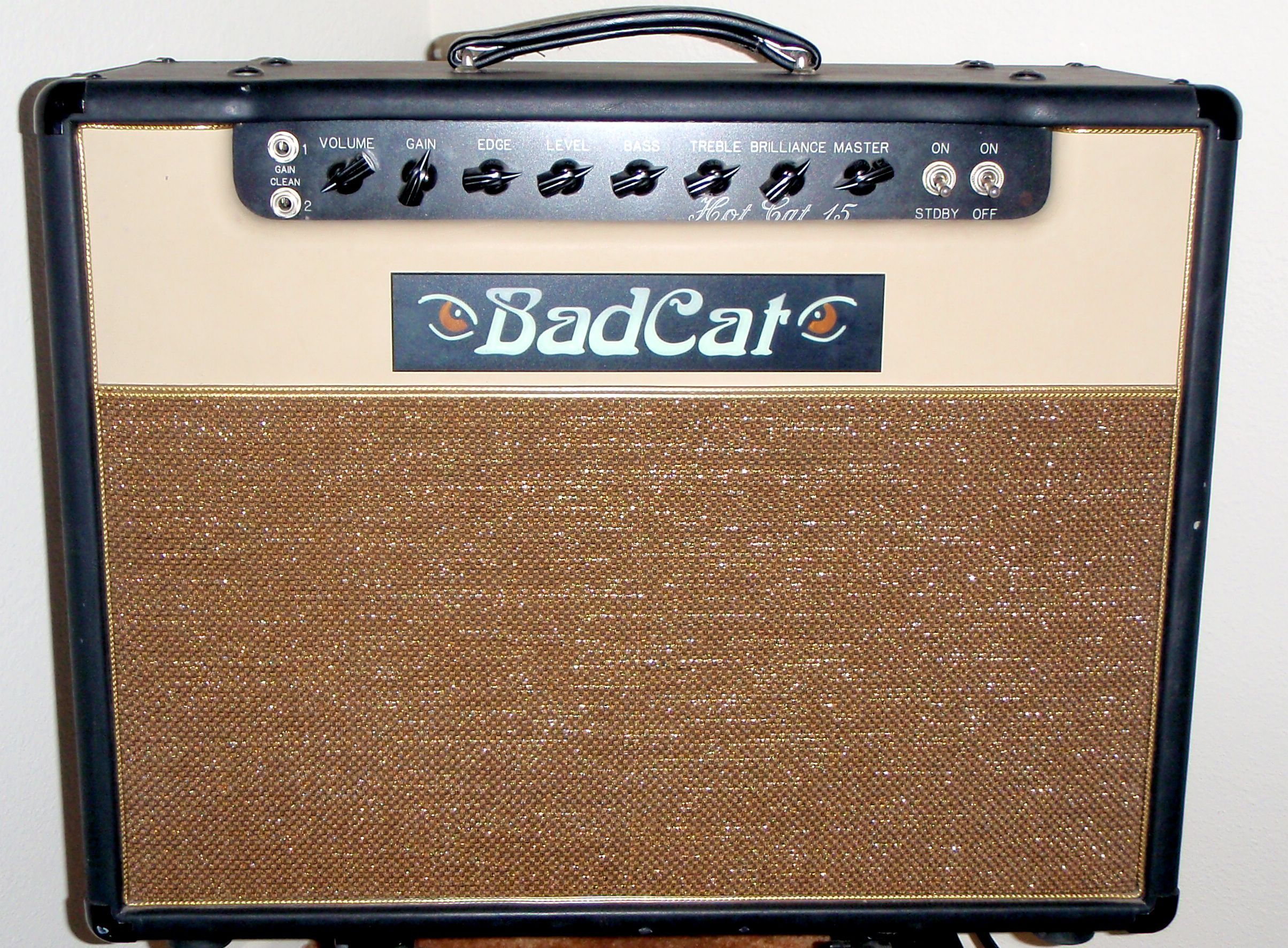 My old Bad Cat Hot Cat 15w amp. Loved this amp, only