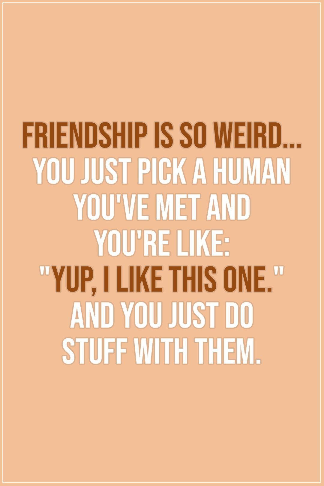 50 Beste Freundschafts Zitate Spruche Friends Quotes Funny Friends Quotes Friendship Quotes Funny