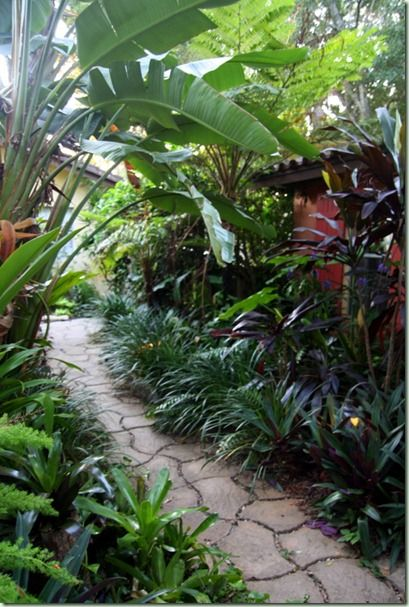 On The West Side Of The House Pathway Tropical Garden