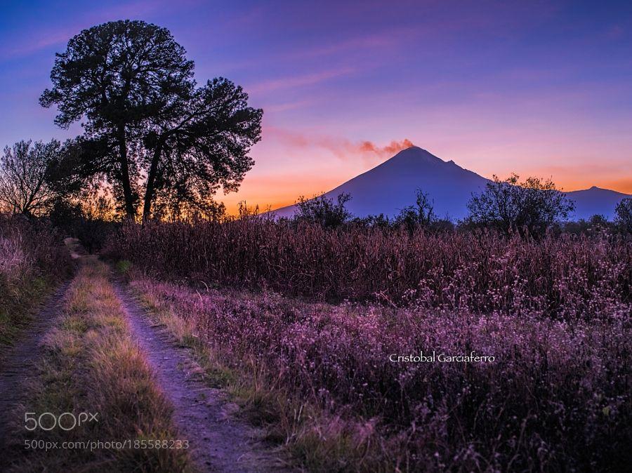 Road to the sun by CristobalGarciaferroRubio. Please Like http://fb.me/go4photos and Follow @go4fotos Thank You. :-)