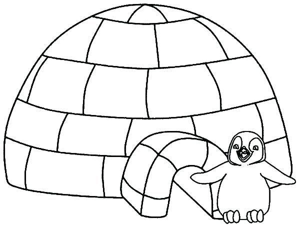 diy pinguin malvorlagen ideen für kinder  animal coloring