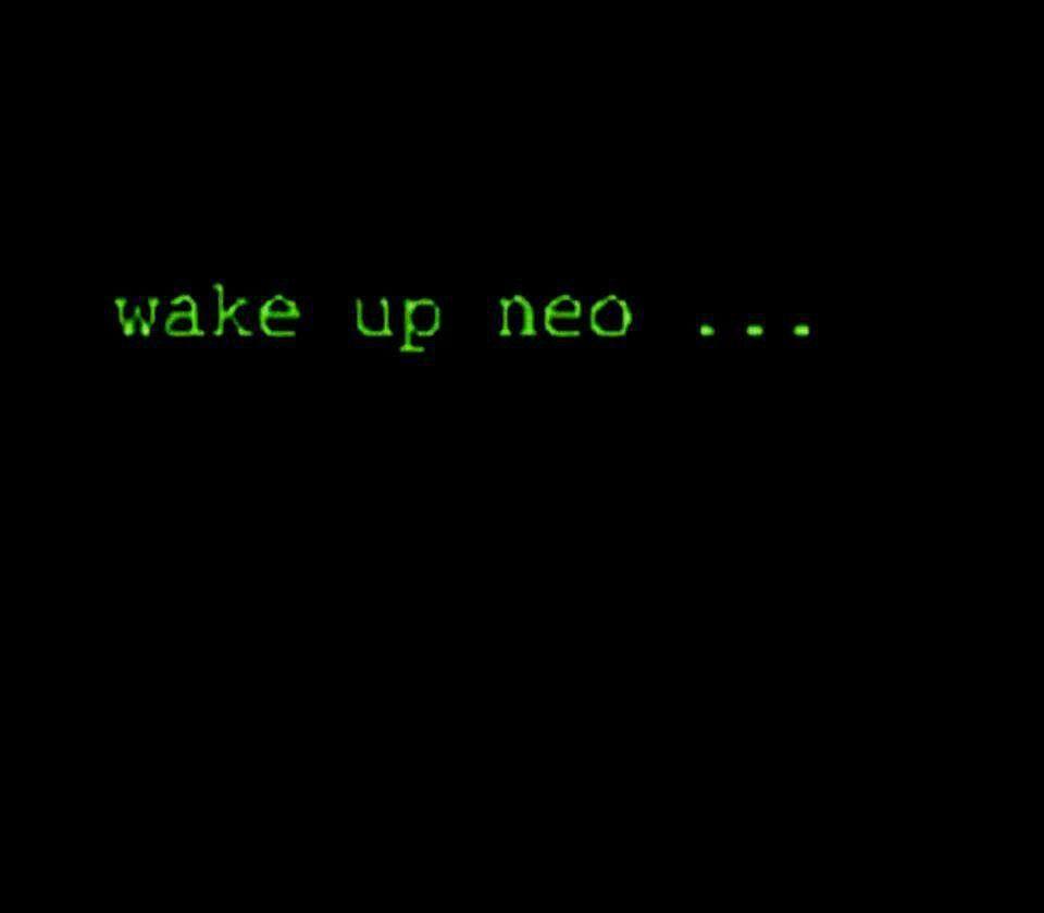 The Matrix Has Youllow The White Rabbitock Knock Neo