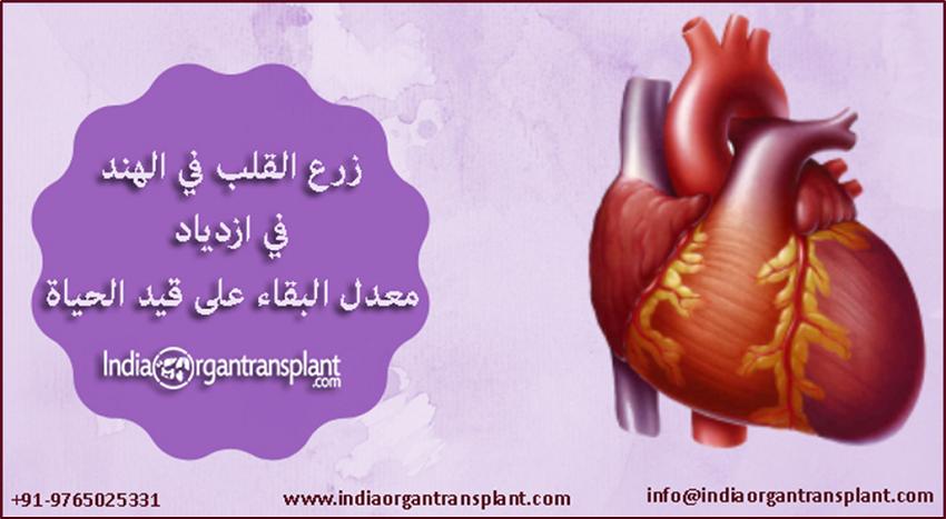 زيادة معدل البقاء على قيد الحياة لزرع القلب في الهند Heart Transplant Transplant Heart
