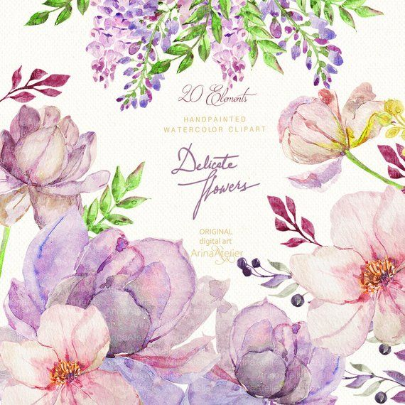 Delicate Flowers Watercolor Clipart Colorful Spring Flowers