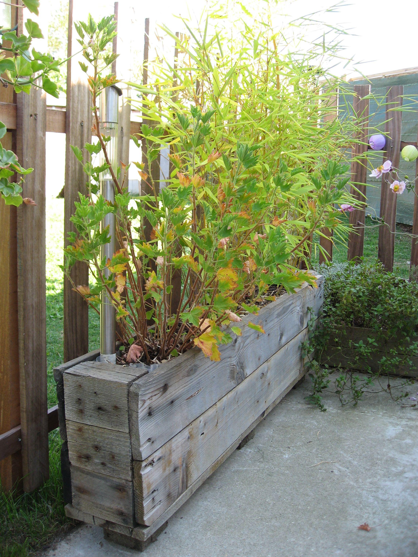 jardin garden diy palette esquissedeco