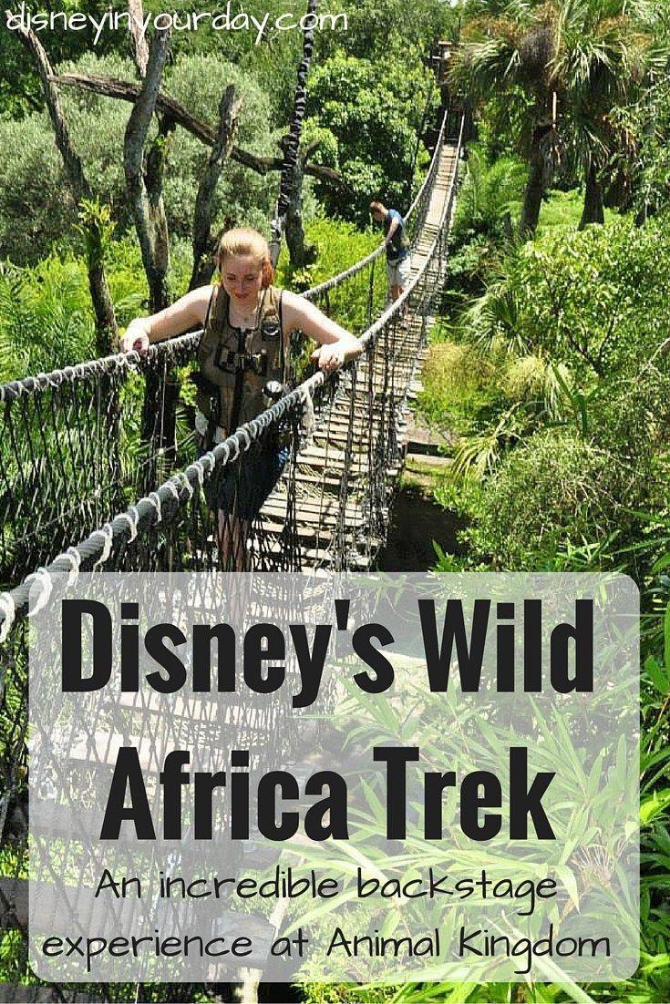Wild Africa Trek -   Animal kingdom disney, Disney world