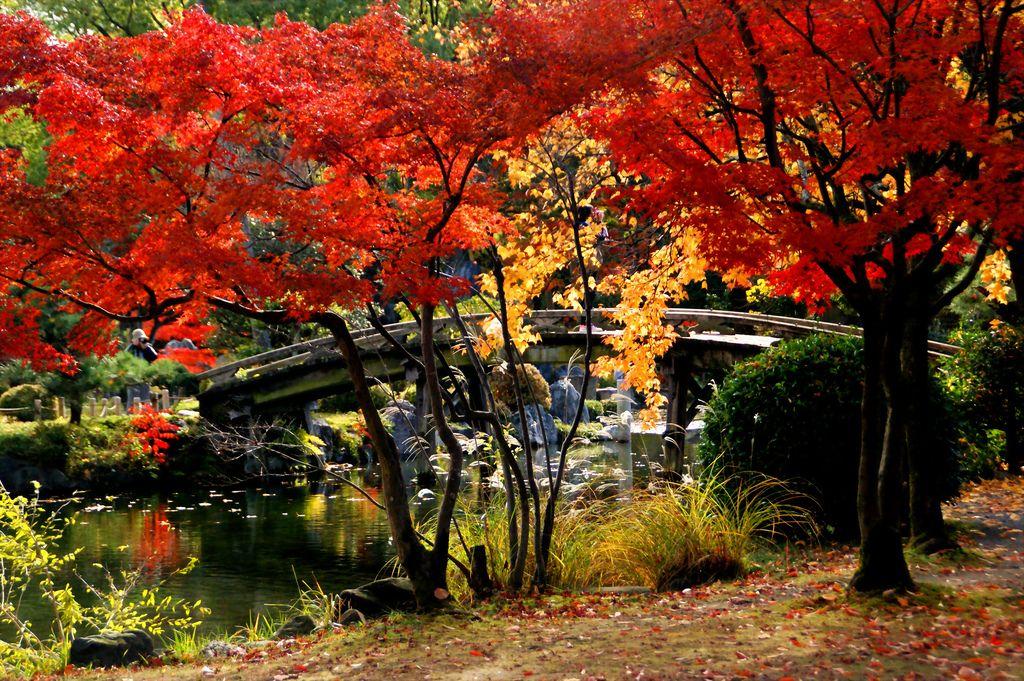 京都の秋(渉成園)/Syousei-en) | von nobuflickr