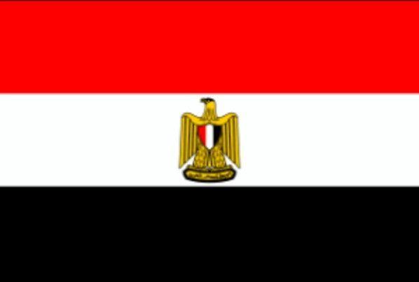 Egypt Flag Egypt Flag Egyptian Flag Flags Of The World