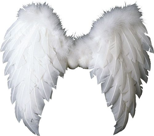 Pin By Isabel On Ch Clary Fray Angel Wings Png Wings Png Wings