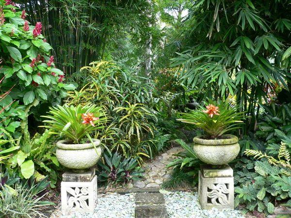 Hundscheidt Tropical Gardens - ABC Brisbane - Australian - tropische pflanzen im garten