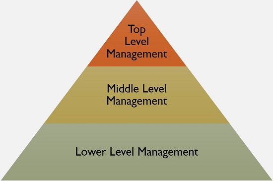 What Is Management Definition Characteristics Levels And Functions Business Jargons Management Leadership Development Hierarchy