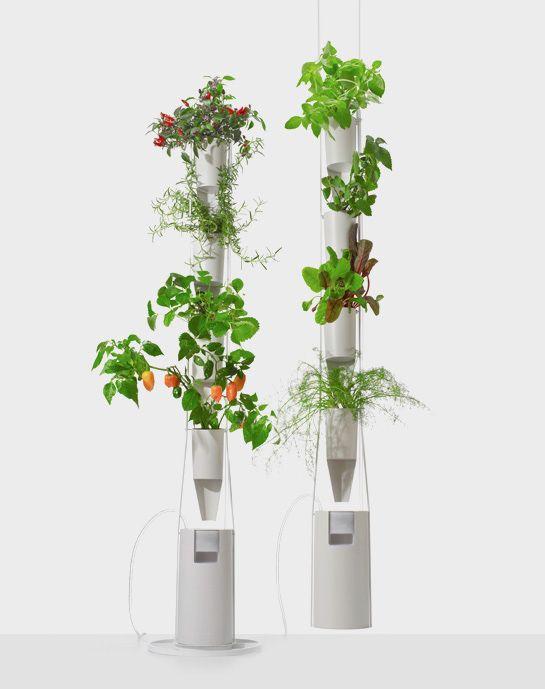 potager vertical suspendu 1 sur mon balcon potager vertical potager et plante verte. Black Bedroom Furniture Sets. Home Design Ideas