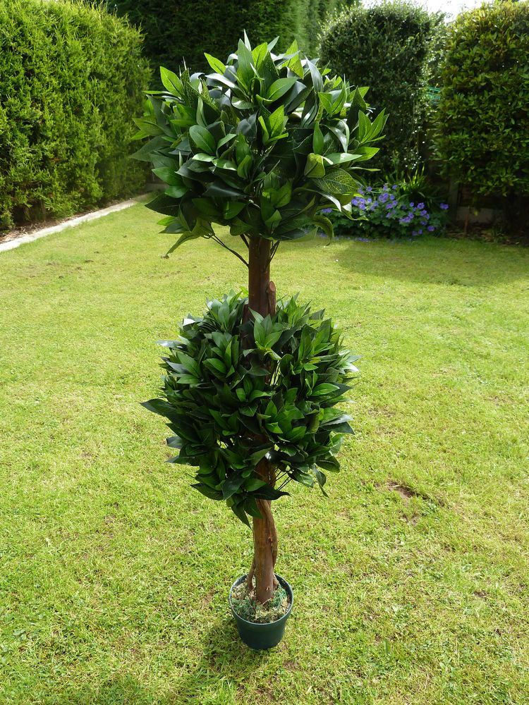 Large 4ft Artificial Double Bay Tree In A Plant Pot Indoor Or Outdoors 1 2m