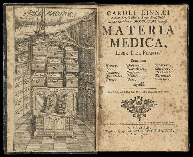 How to Make a Materia Medica - My Kind of Medicine Blog - Heirloom Gardener  | Materia medica, Medica, Herbalism