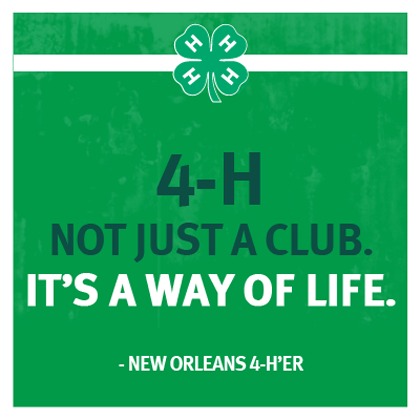 We think you'll agree! #4HLife (With images) | 4 h club, 4 h, Life