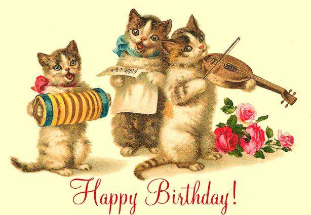 birthday cards  zazzle  vintage cat vintage art cats