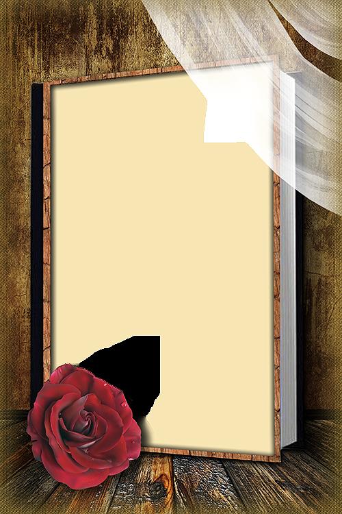 Png Frame Flower Background Wallpaper Flower Background Design Flower Phone Wallpaper