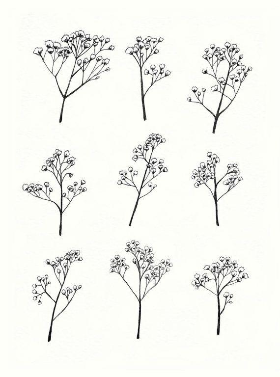 fc19f5e7f Gypsophila Baby's Breath Flower Illustration A4 by mayandjuniper