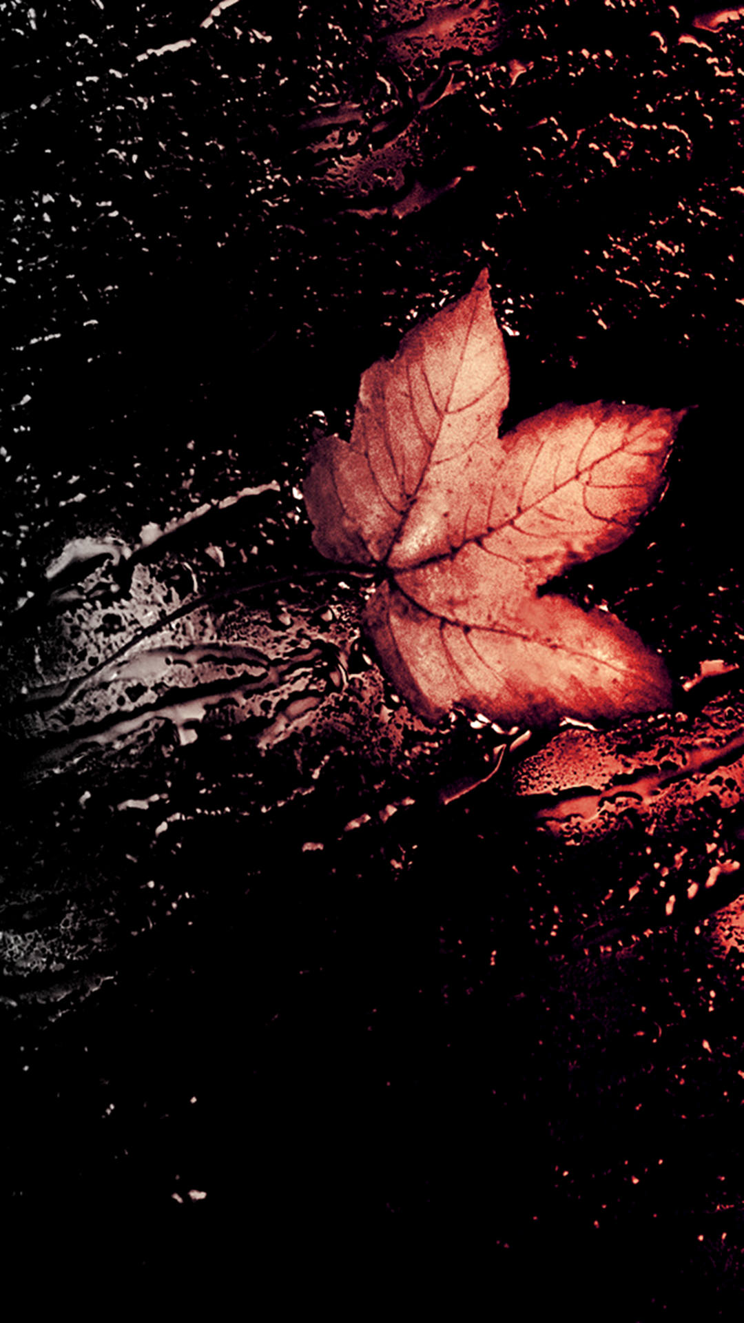 Autumn Leave iPhone Wallpapers. Tap to see more iPhone 6