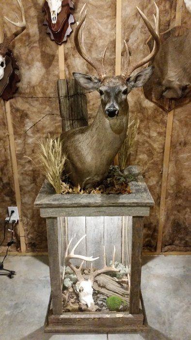 Barnwood Pedestal For Whitetail Mount Deer Decor Deer