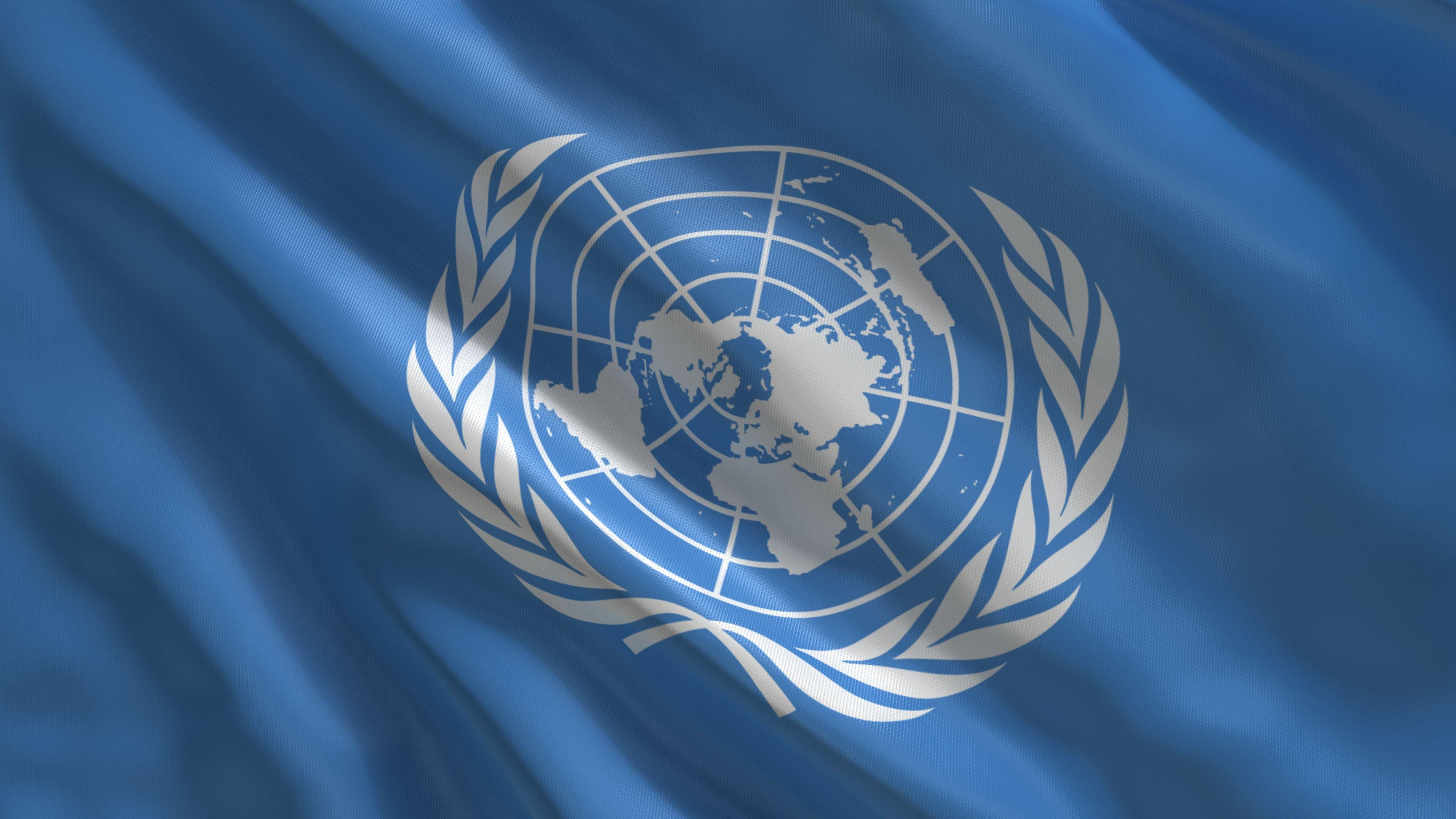 Onu United Nations Organizacion De Las Naciones Unidas Un Bandera Flag Naciones Naciones Unidas Banderas Del Mundo