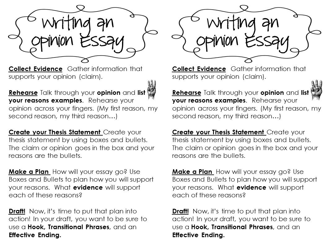 Literary Response Opinion Essay Unit Grades   Opinion Essay