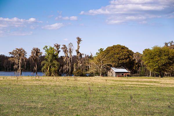 Farm On The Lake