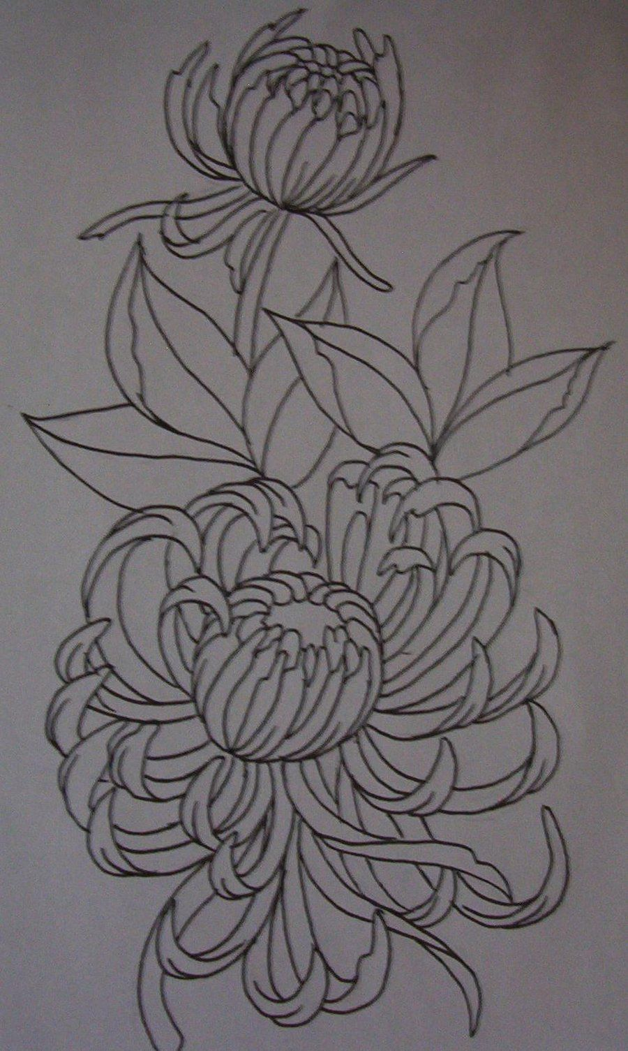 lotus flower drawings for tattoos | Lotus Flower Sketch ...