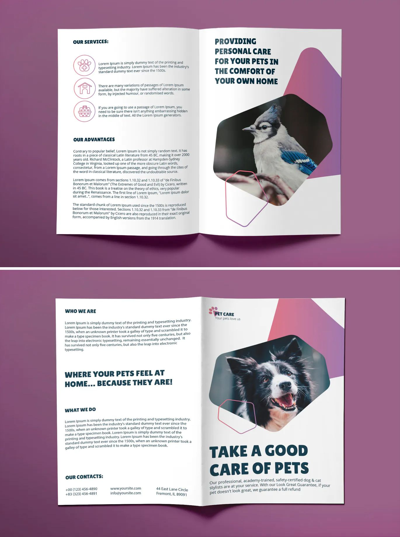 Pet Grooming Care Bifold Brochure Template AI, EPS, INDD