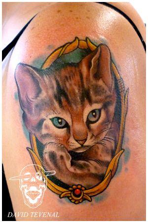 Cat Tat Tuesday Cute Kitty Portrait Modcatlove Cat Tattoo Dog Tattoos Cat Portrait Tattoos
