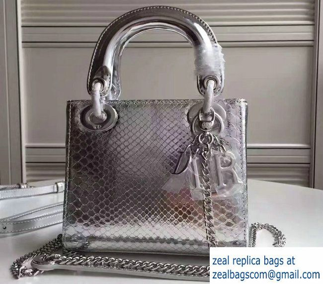 Lady Dior Python Small Mini Bag with Double Chain Strap Silver 2017 ... 749521ffeb9