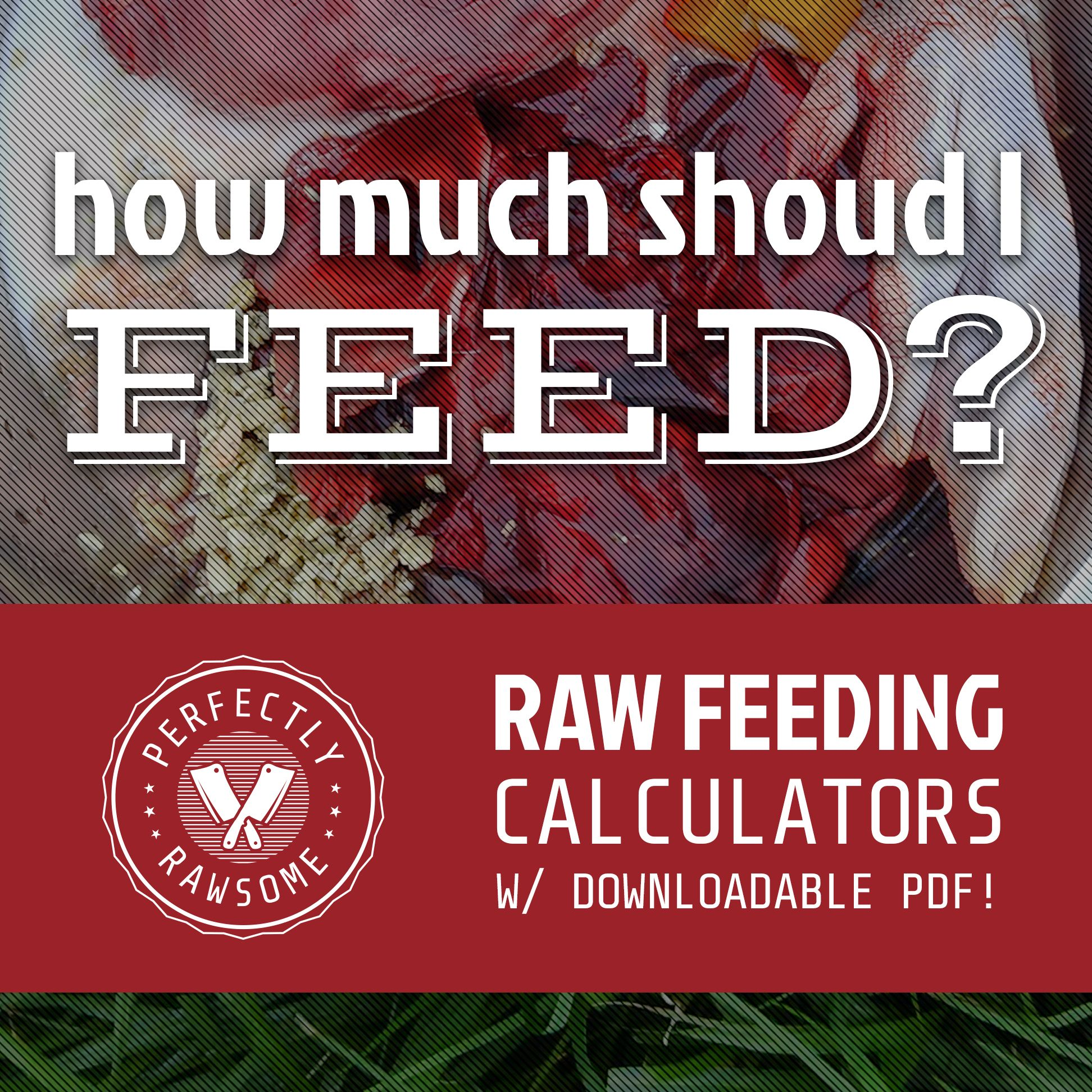 Raw Feeding Calculators For Cats Dogs Raw Dog Food Diet Raw Cat Food Recipes Raw Dog Food Recipes
