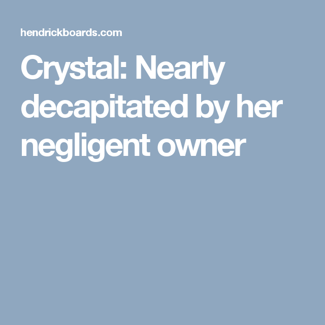 Crystal: Nearly decapitated by her negligent owner