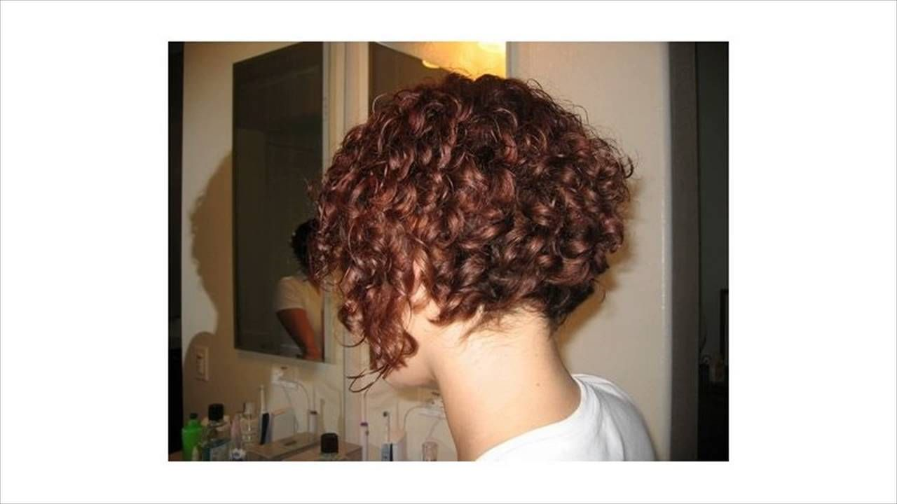 Does A Reverse Bob Go Good With Very Thick Curly Hair Youtube Curly Inverted Bob