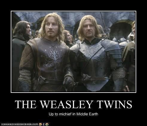 Hp In The Lord Of Ring Harry Potter Memes Harry Potter Weasley Twins