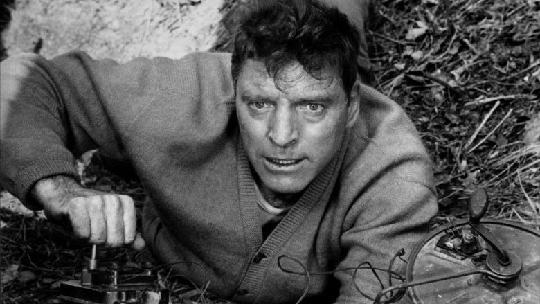 "Burt Lancaster in an often overlooked performance from ""The Train."" Tough-guy Burt at his best, with fascinating subject matter and great direction by John Frankenheimer."