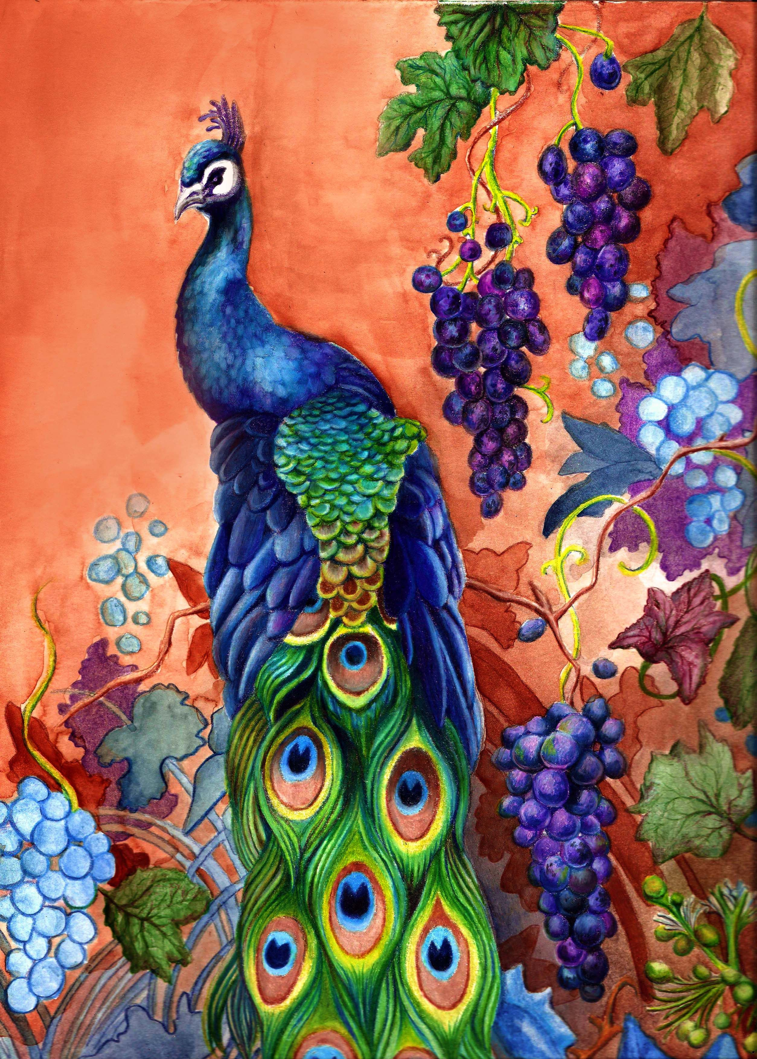 Art farm animal watercolor painting on canvas art 8x10 artsyhome - Peacock Art Peacock Bird Artwork With Grapes