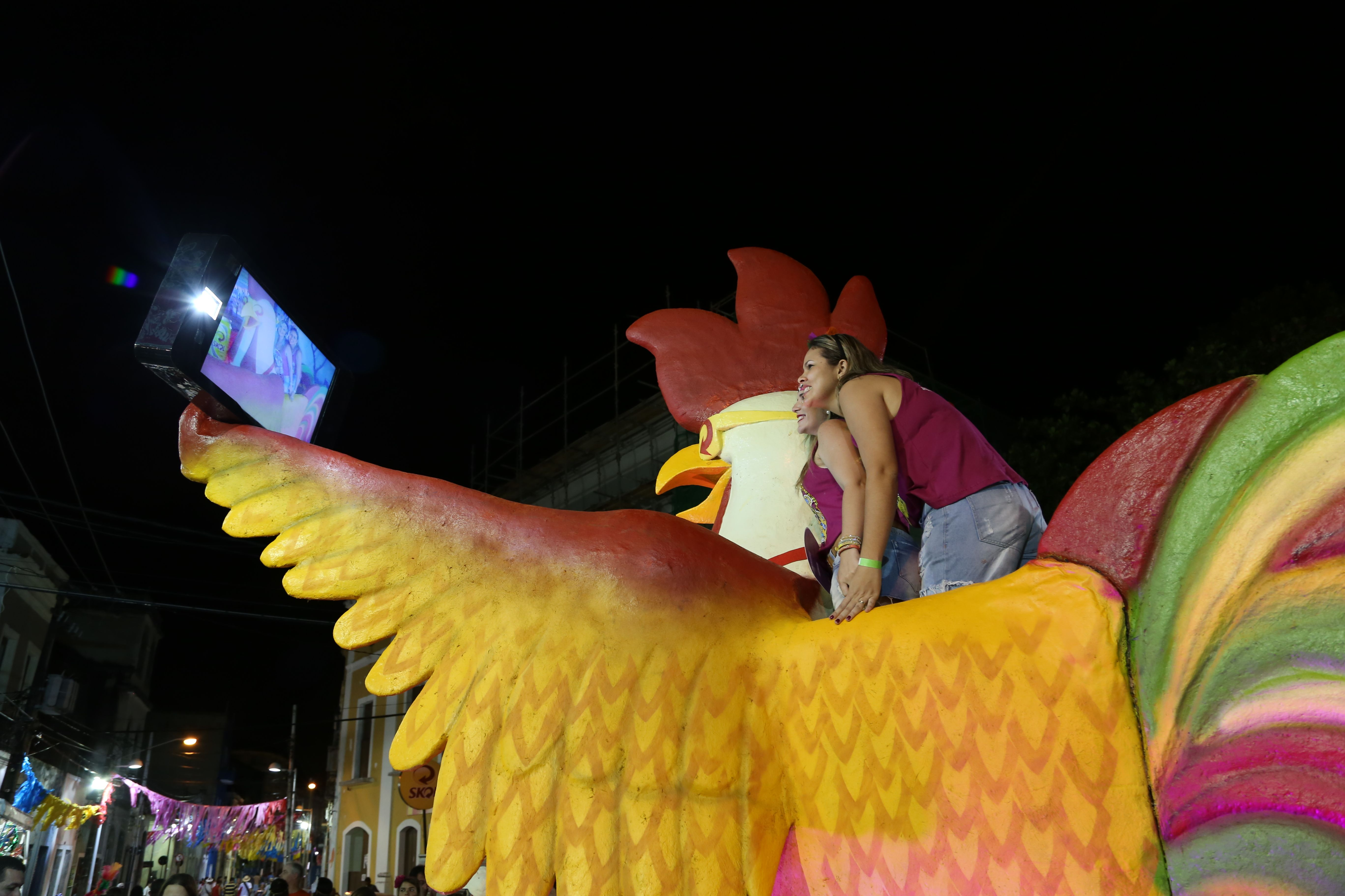 Galo Selfie da Skol para o Carnaval 2015 do Recife Antigo.