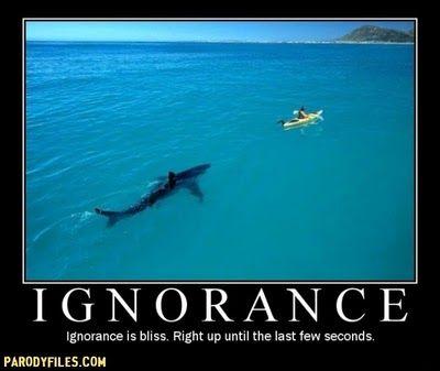ignorance in fahrenheit 451