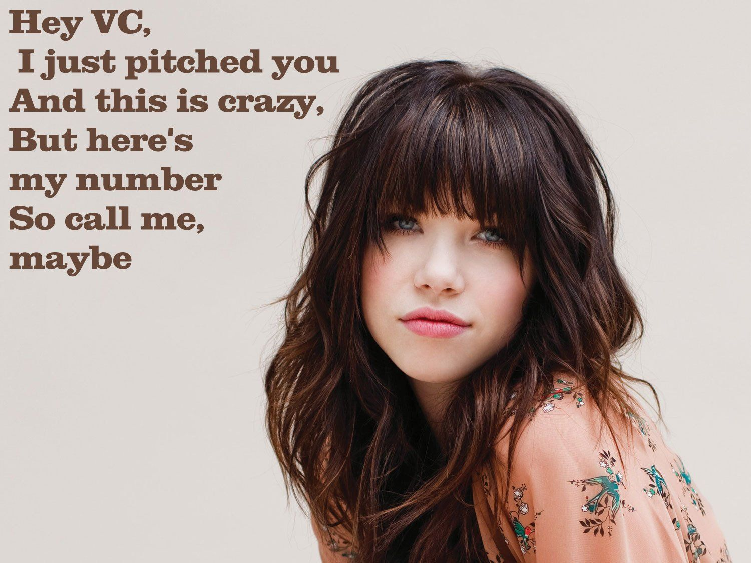 Hey VC, I just pitched you, and this is crazy -- but here's my number, so call me, maybe...