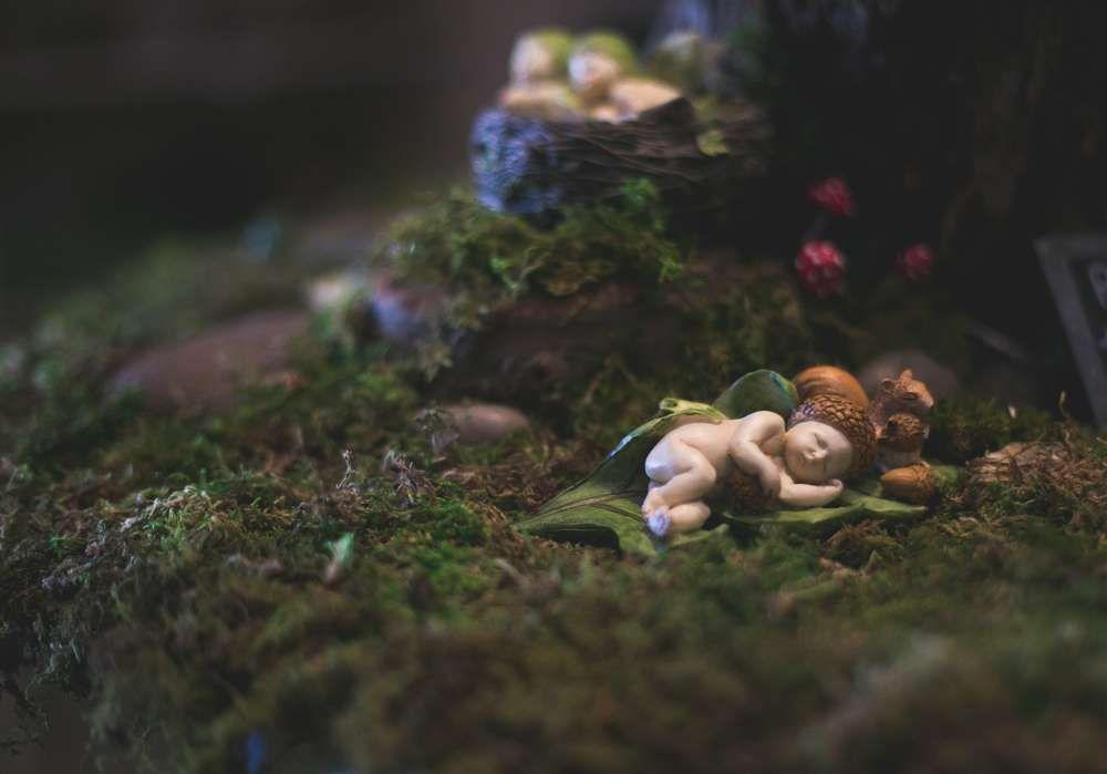 Enchanted Fairy Garden Party | CatchMyParty.com