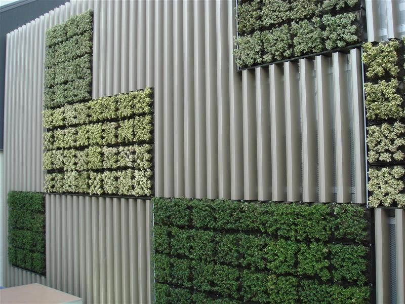 very interesting foliage blocks as part of a wall