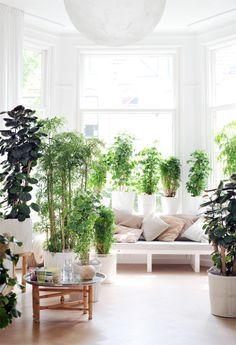 Stijlvol groen in het interieur