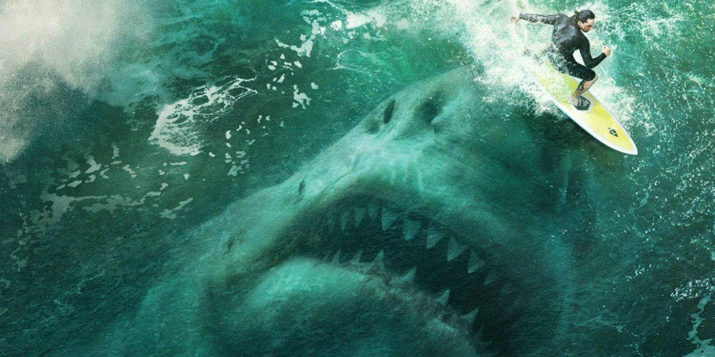 Die Meg Schluckt Einen Kafig Taucher Ganz In Diesem Scary Tease Dermegafilmtwitter Shark Tale Hai Filme Jason Statham