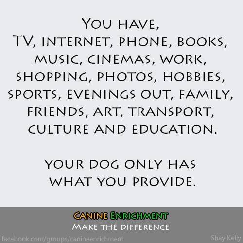 Idea By Yvonne Williams On Dog Training Tips