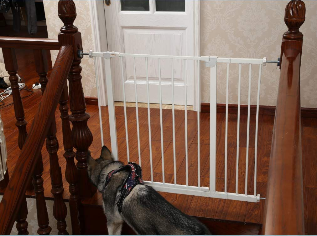 Lemka Safety Pet Gate Find Out More About The Great Product At
