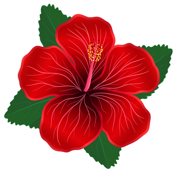 Red Flower Png Clipart Image Digital Flowers Flower Clipart Flower Painting